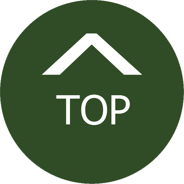 Image-top